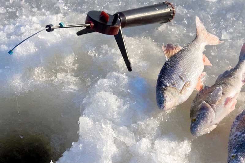 Рыбалка на Ахтубе зимой